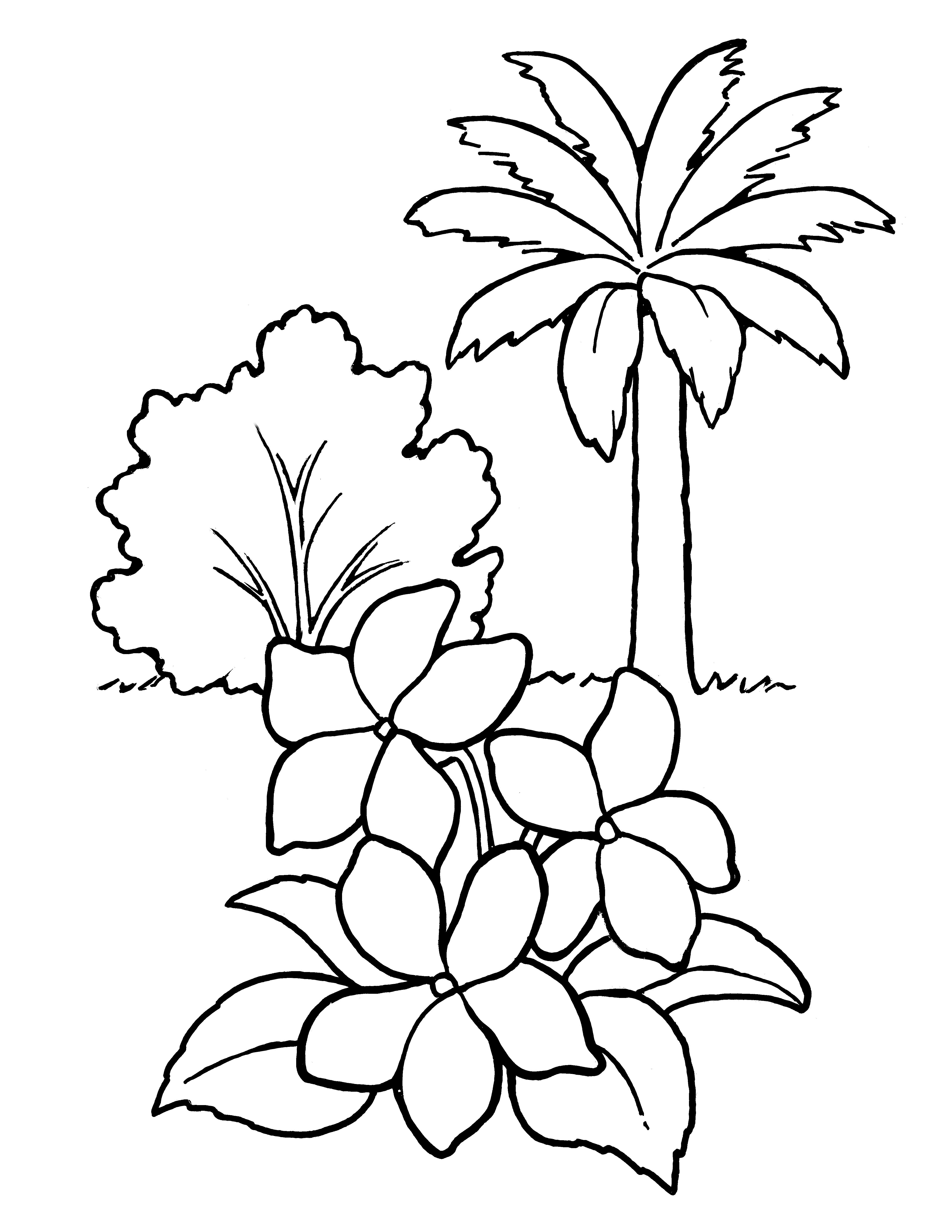 A line drawing of plants and trees from the nursery manual, Behold Your Little Ones (2008), page 35.