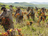 Men and women working in a vineyard in the countryside.