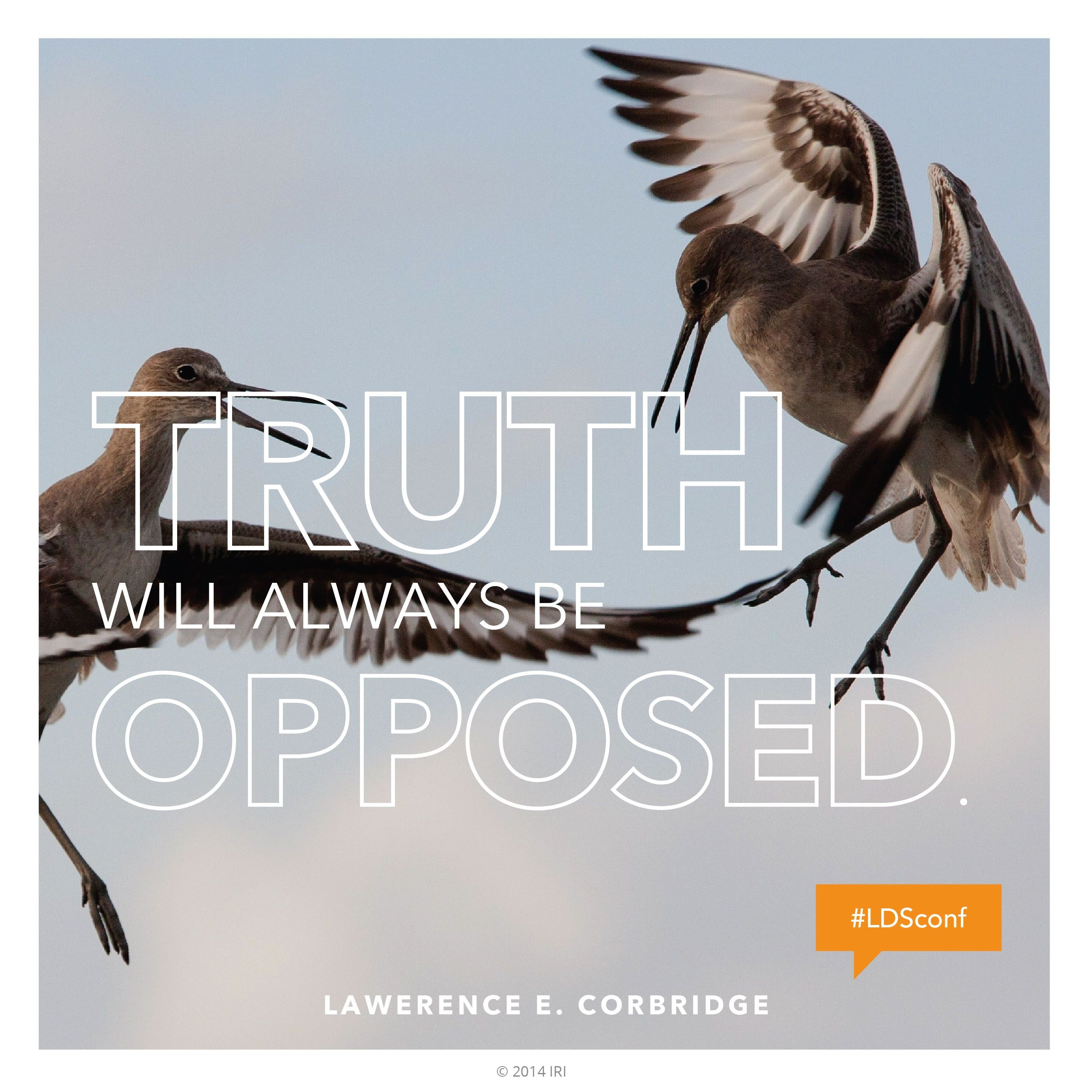 """""""Truth will always be opposed.""""—Elder Lawrence E. Corbridge, """"The Prophet Joseph Smith"""""""