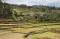 Madagascar: Farm Lands