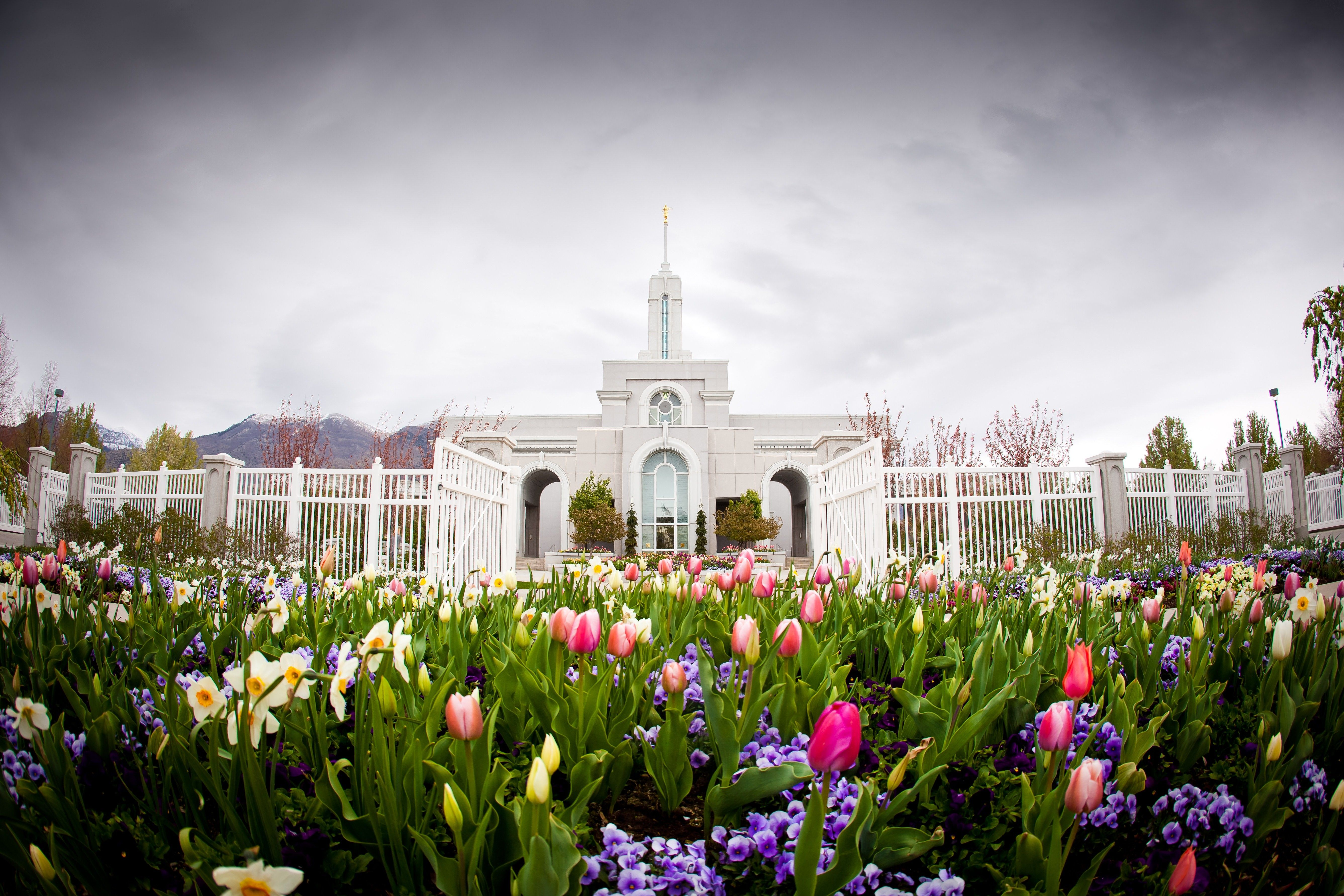The entire Mount Timpanogos Utah Temple, including scenery.