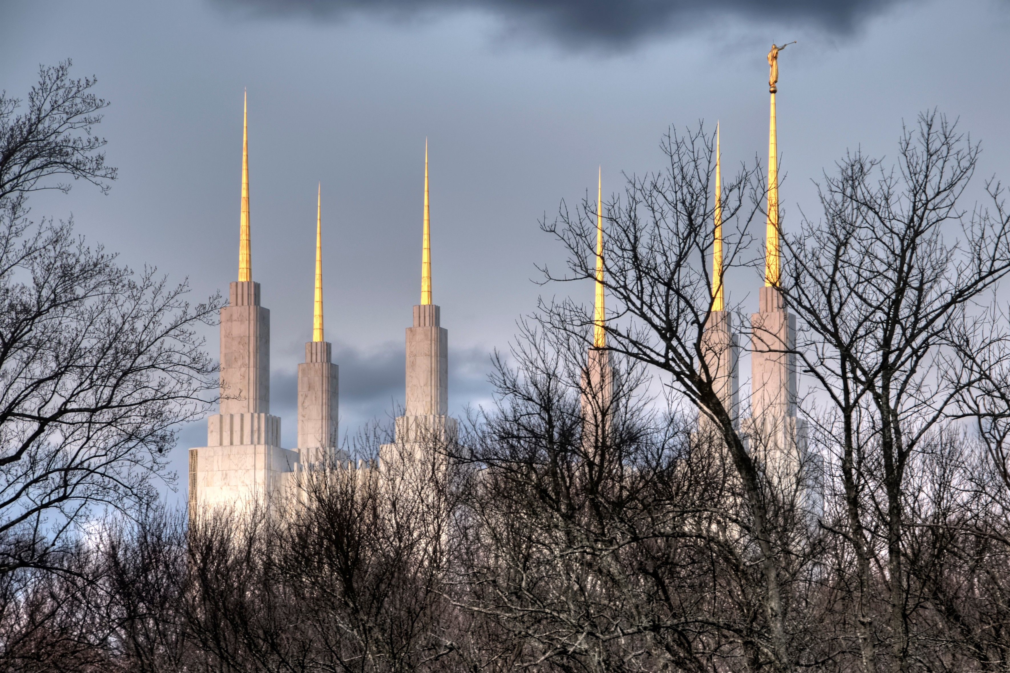 The Washington D.C. Temple spires, with trees.