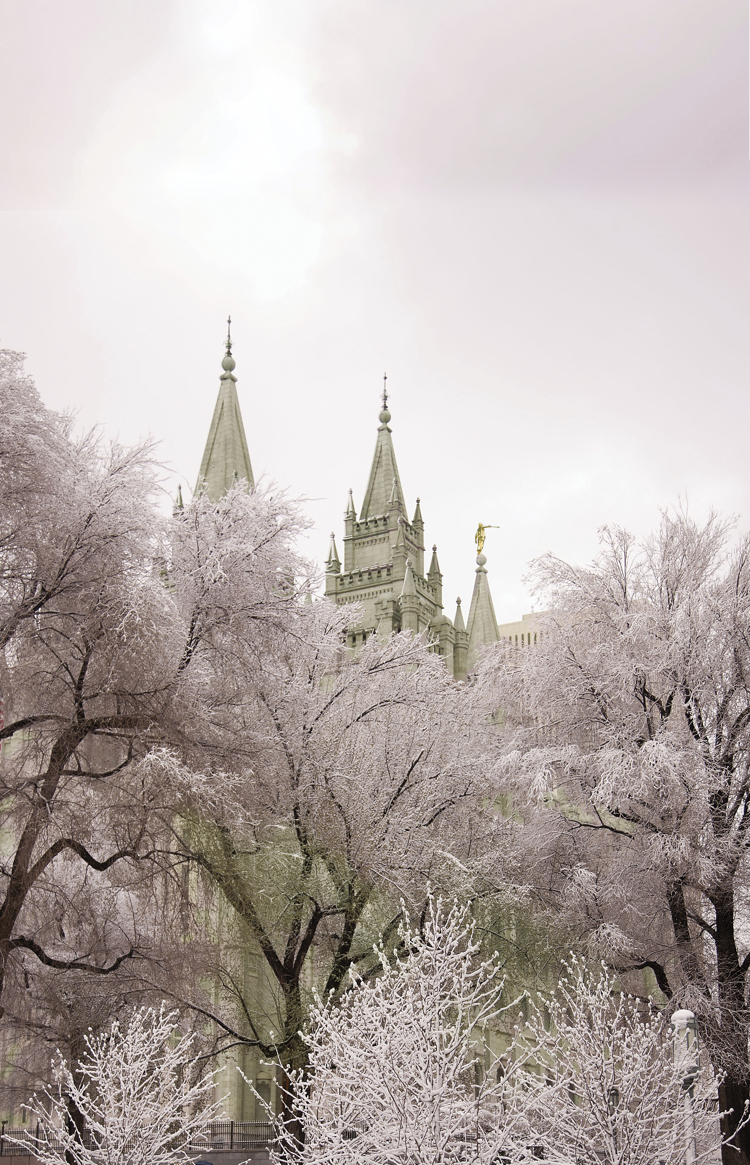 The Salt Lake Temple during winter, including the spires and scenery.