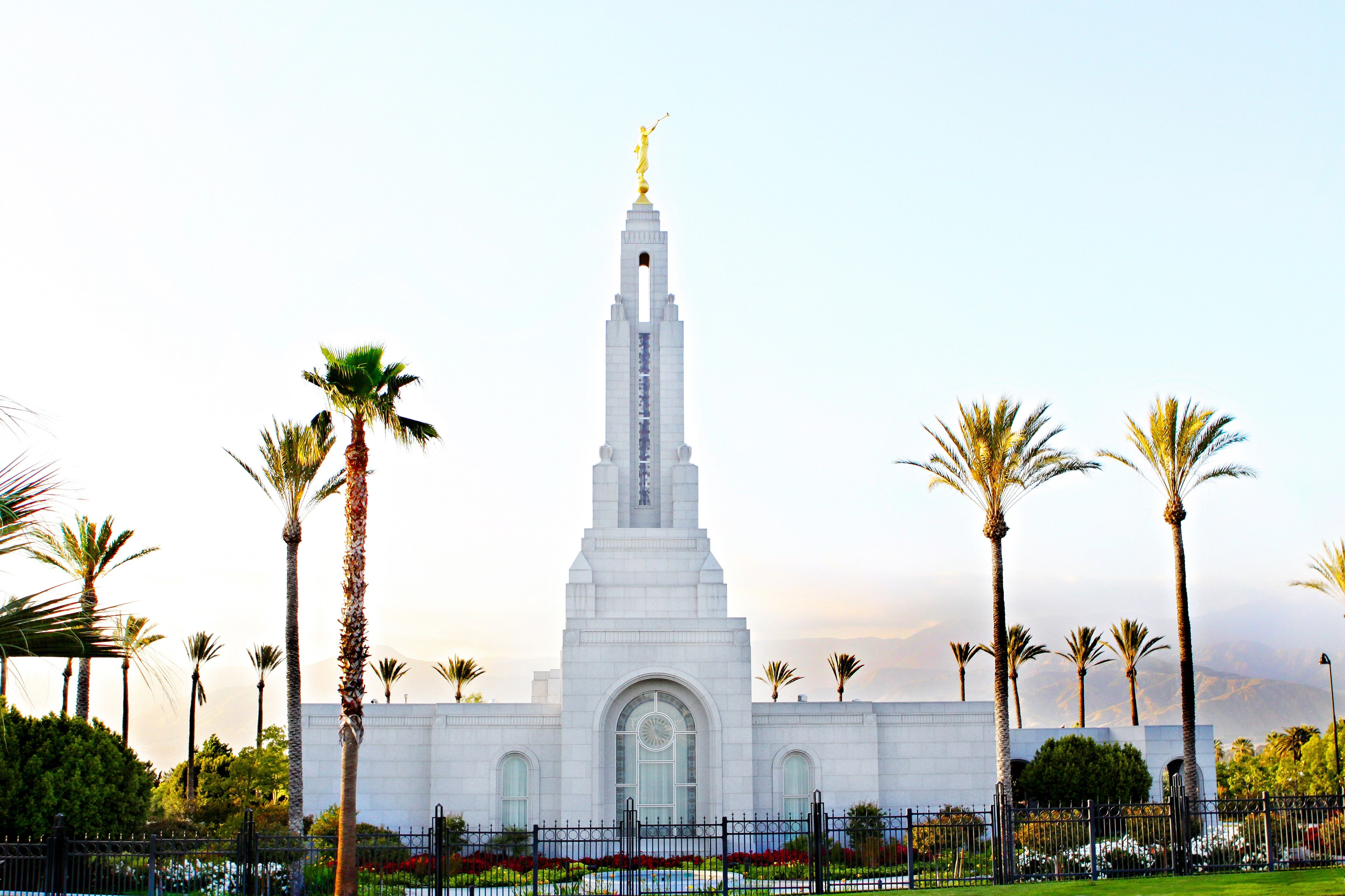 The Redlands California Temple, with palm trees growing all around it.