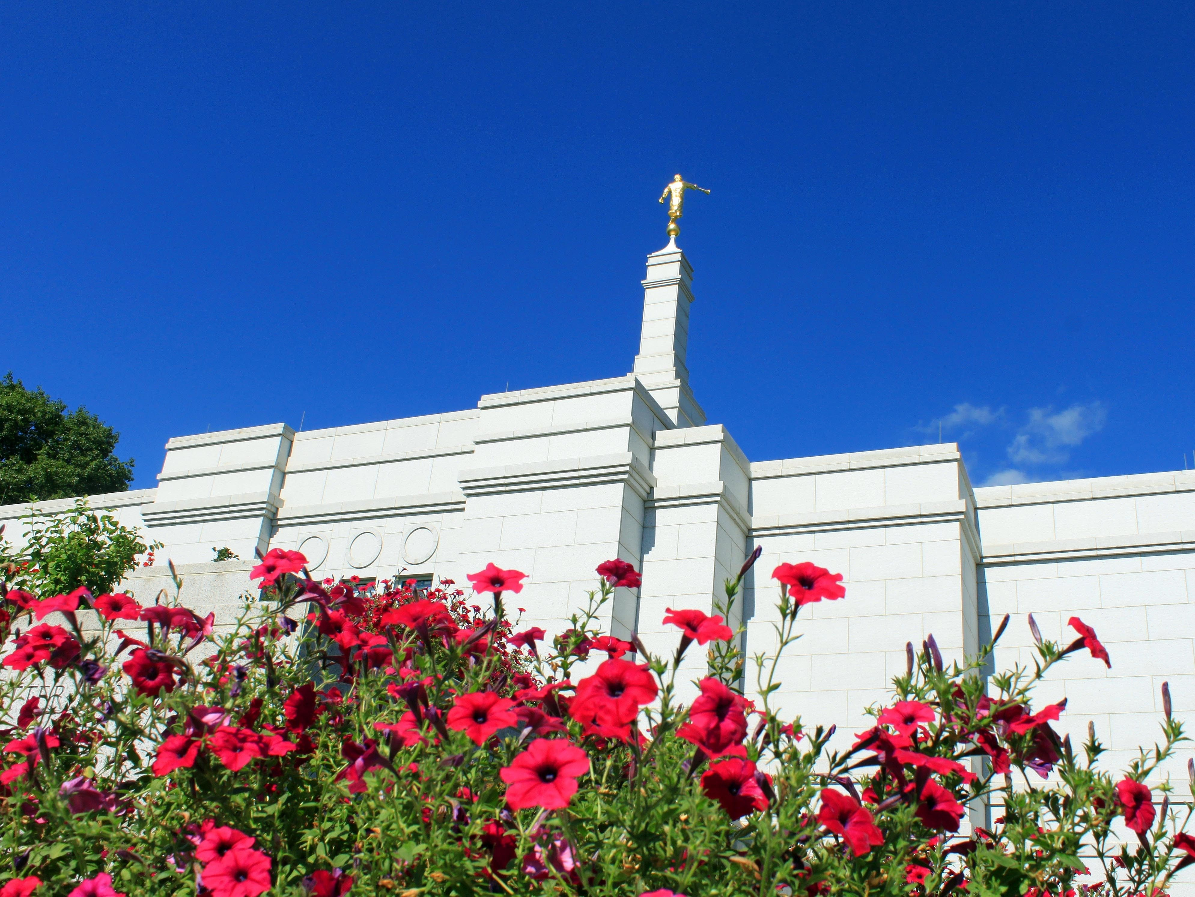The west side of the Winter Quarters Nebraska Temple in the spring, with flowers.
