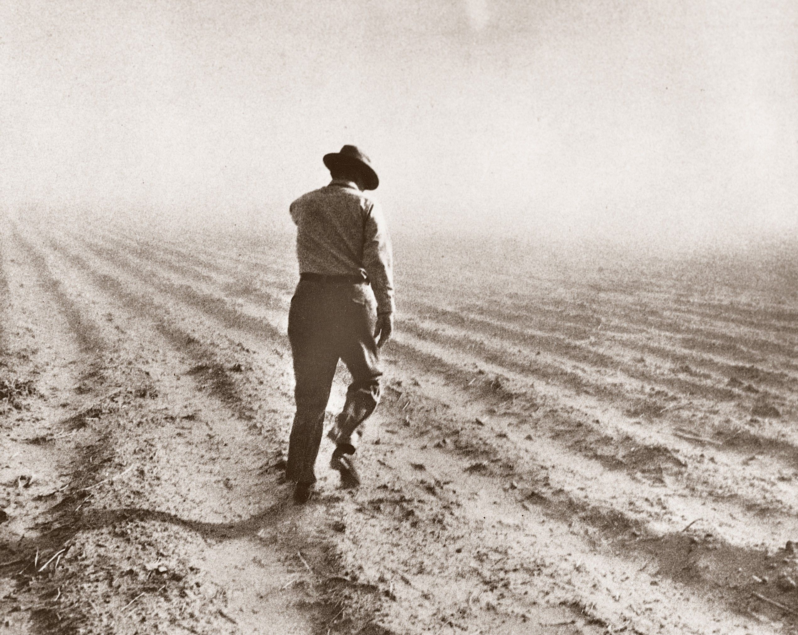 Ezra Taft Benson walking and inspecting a field during a drought.