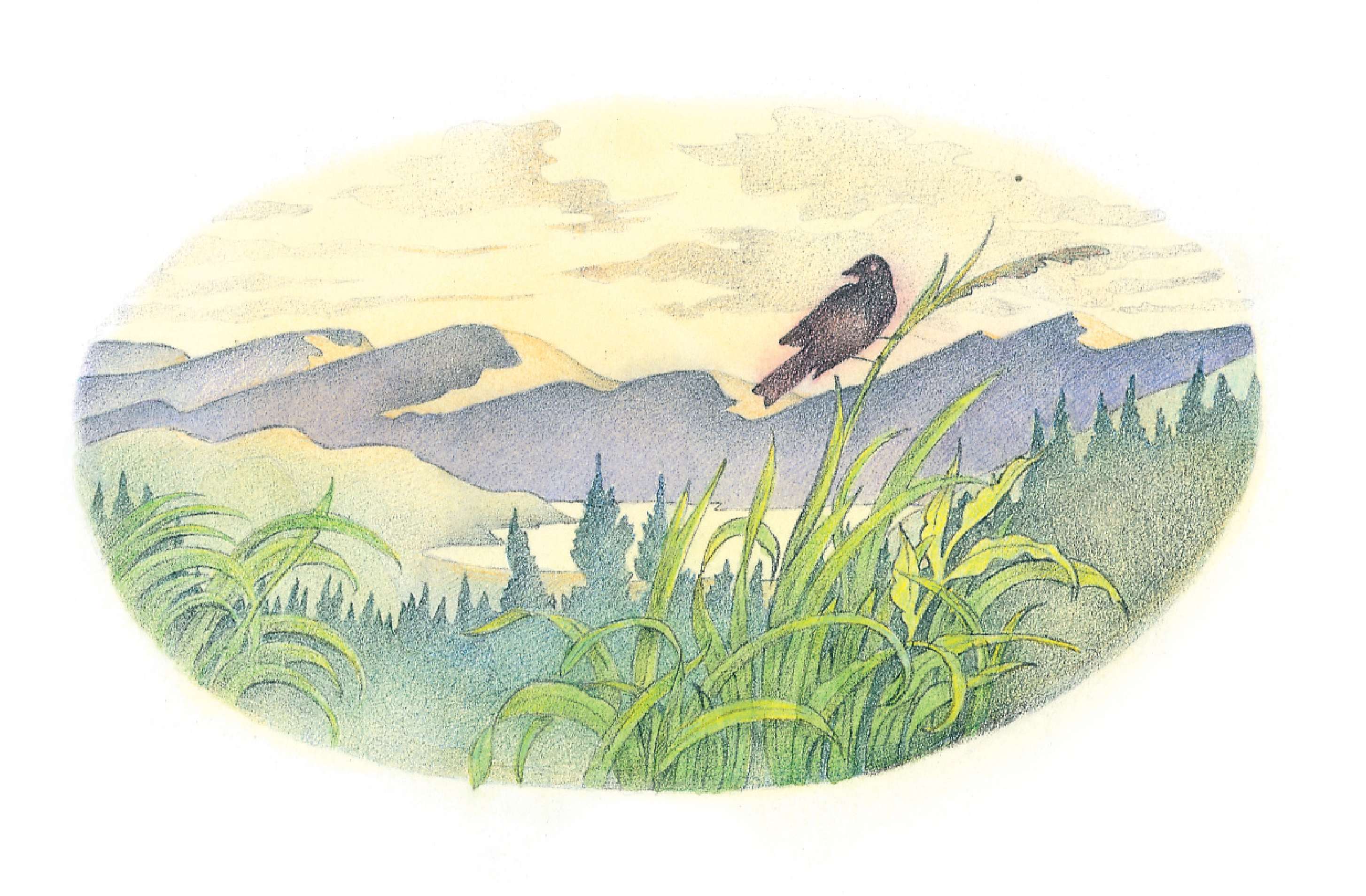 """A bird landing on a long blade of grass. From the Children's Songbook, page 288, """"Impromptu""""; watercolor illustration by Richard Hull."""