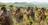 laborers in a vineyard