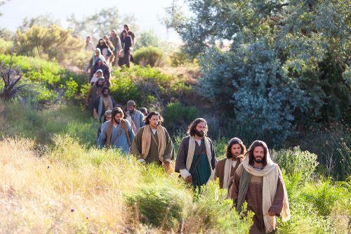Jesus Christ. Miracles. Dead Raised (Lazarus)