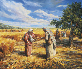 Ruth Gleaning in the Fields (Ruth and Naomi)