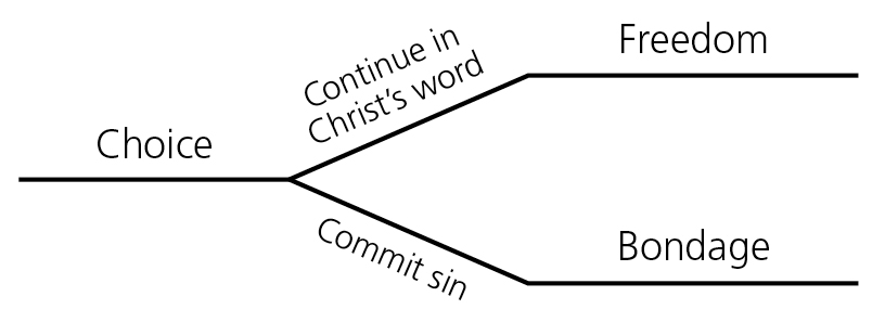 Lesson 68: John 8:31–59