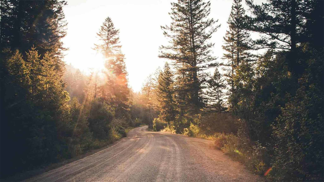 The Articles of Faith explain our basic beliefs | ComeUntoChrist org