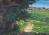 Shepherd's View of Bethlehem