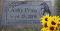 Utah: Sunflowers Grave