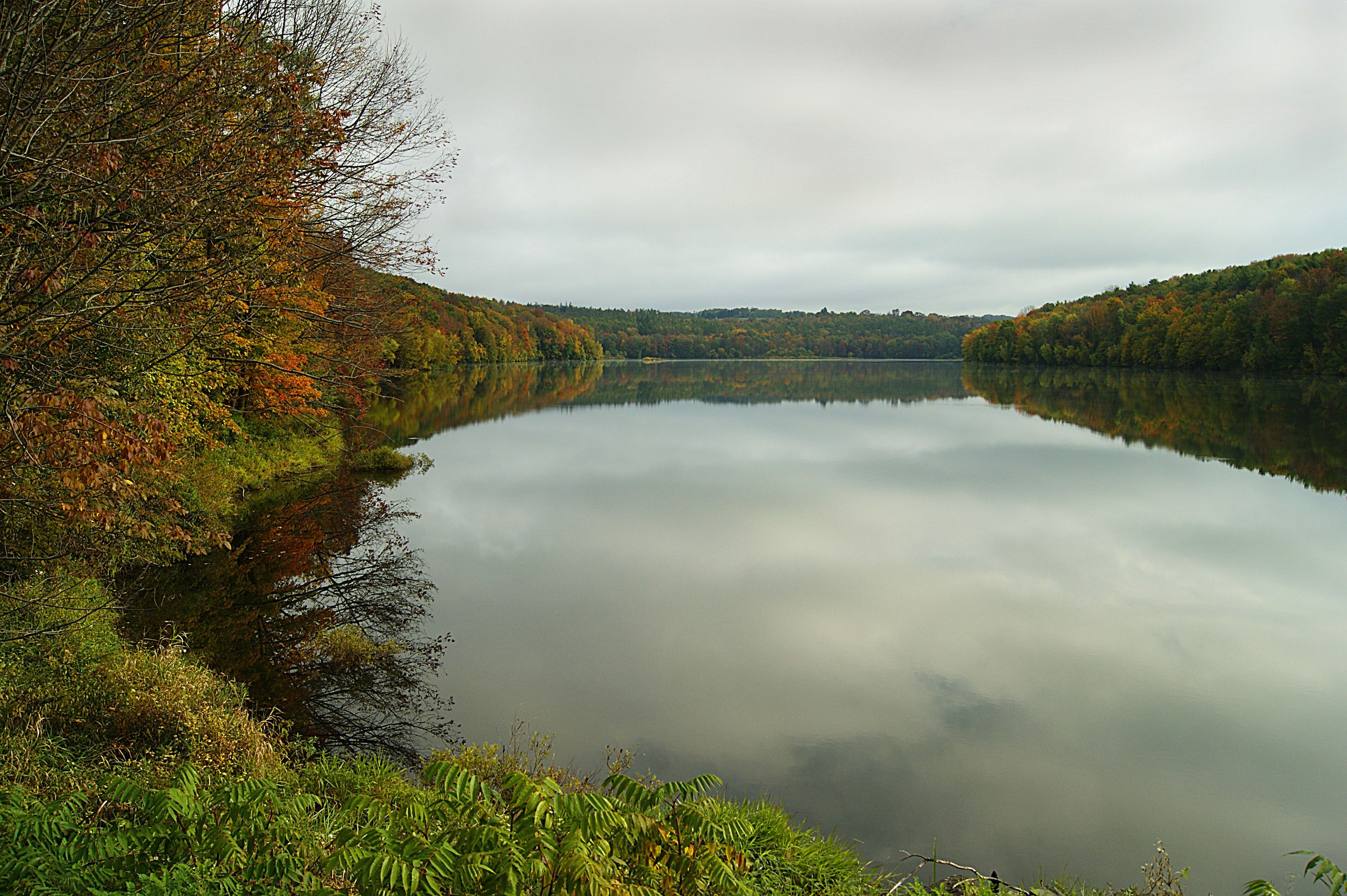 Trees changing colors in autumn are reflected in the river.