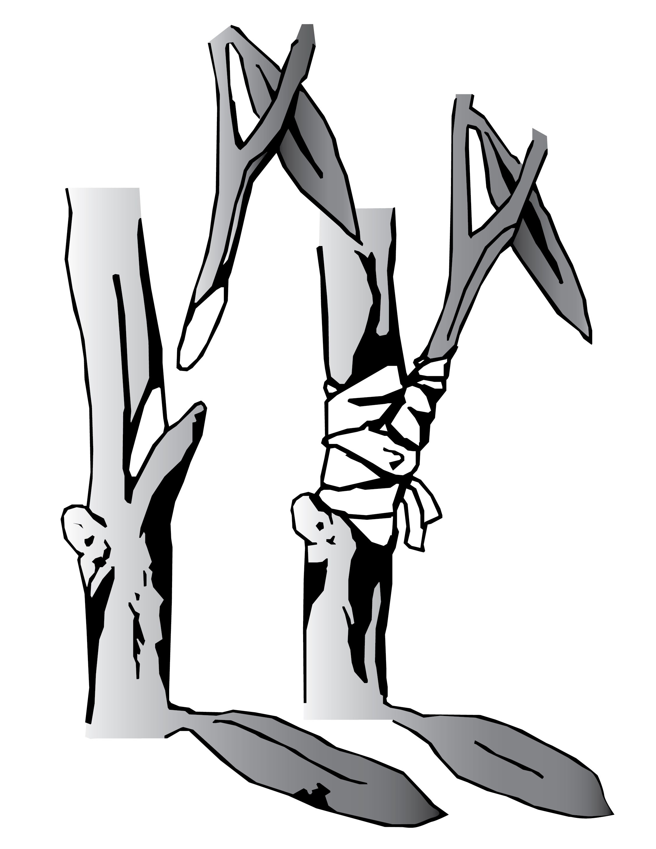 An illustration demonstrating the grafting of a branch into a tree.