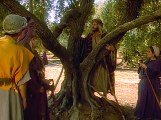 A depiction of Jacob 5