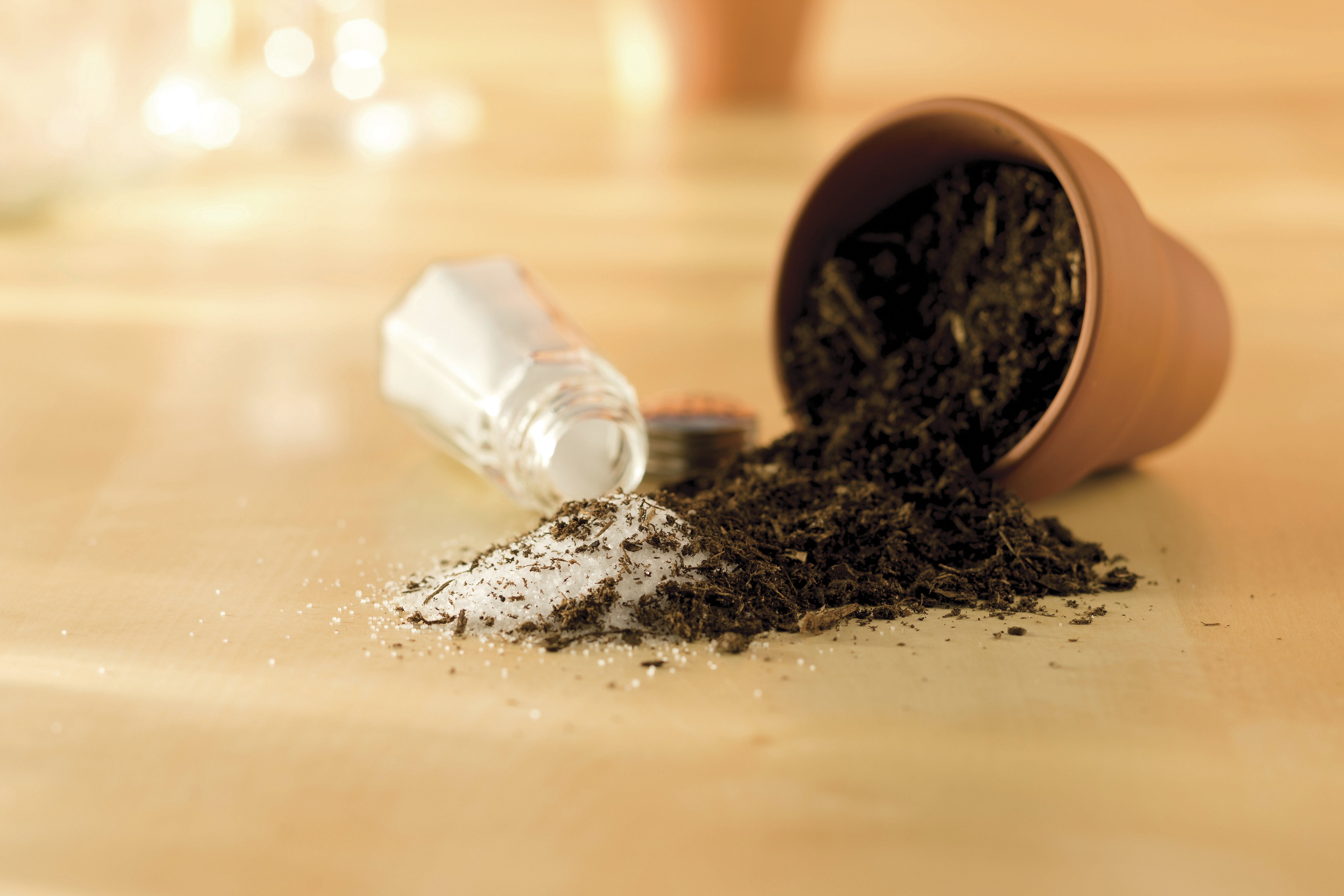 A conceptual photograph of salt mixing with dirt.