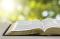 Open Scripture