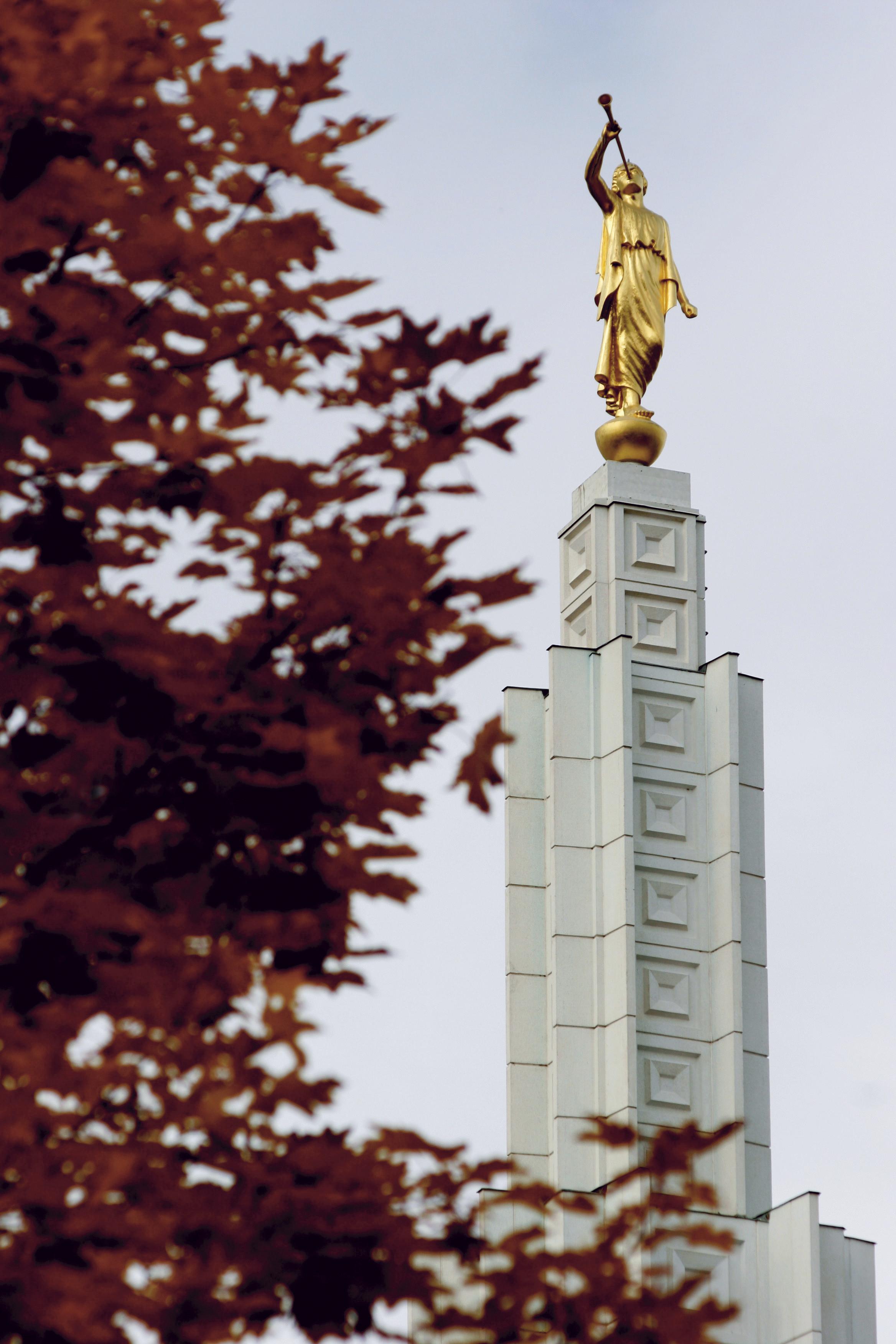 The Idaho Falls Idaho Temple spire, including a tree.