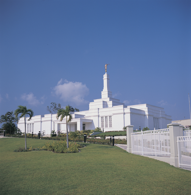 The Tampico Mexico Temple, with a partial view of the grounds, including palm trees, during the daytime.