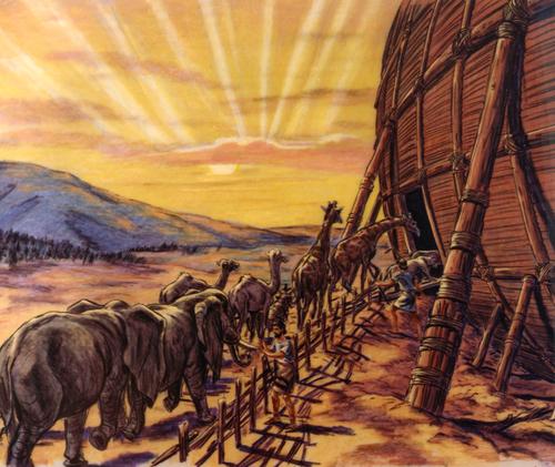 animals going into ark
