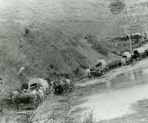 Pioneer Wagon Train in Echo Canyon