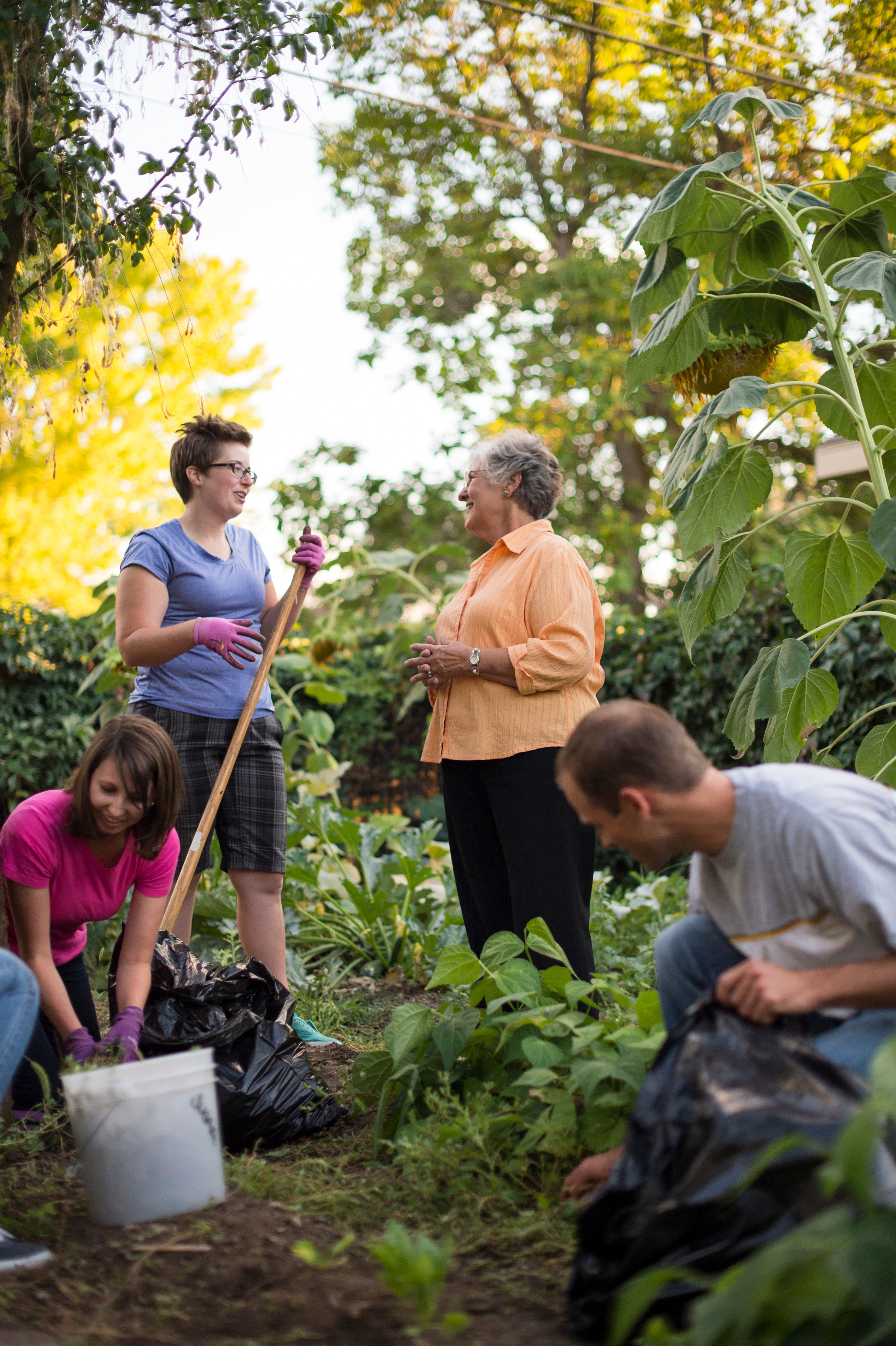 A group of young adults help an elderly woman clean up her yard.