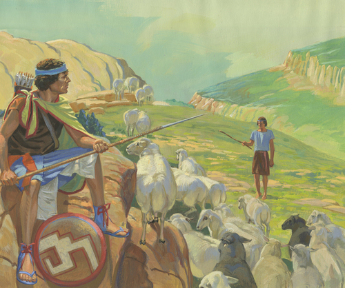 guard with sheep