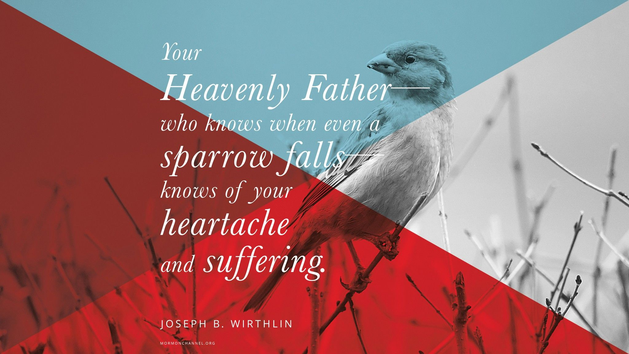 """""""Your Heavenly Father—who knows when even a sparrow falls—knows of your heartache and suffering.""""—Elder Joseph B. Wirthlin, """"Finding a Safe Harbor"""" © undefined ipCode 1."""