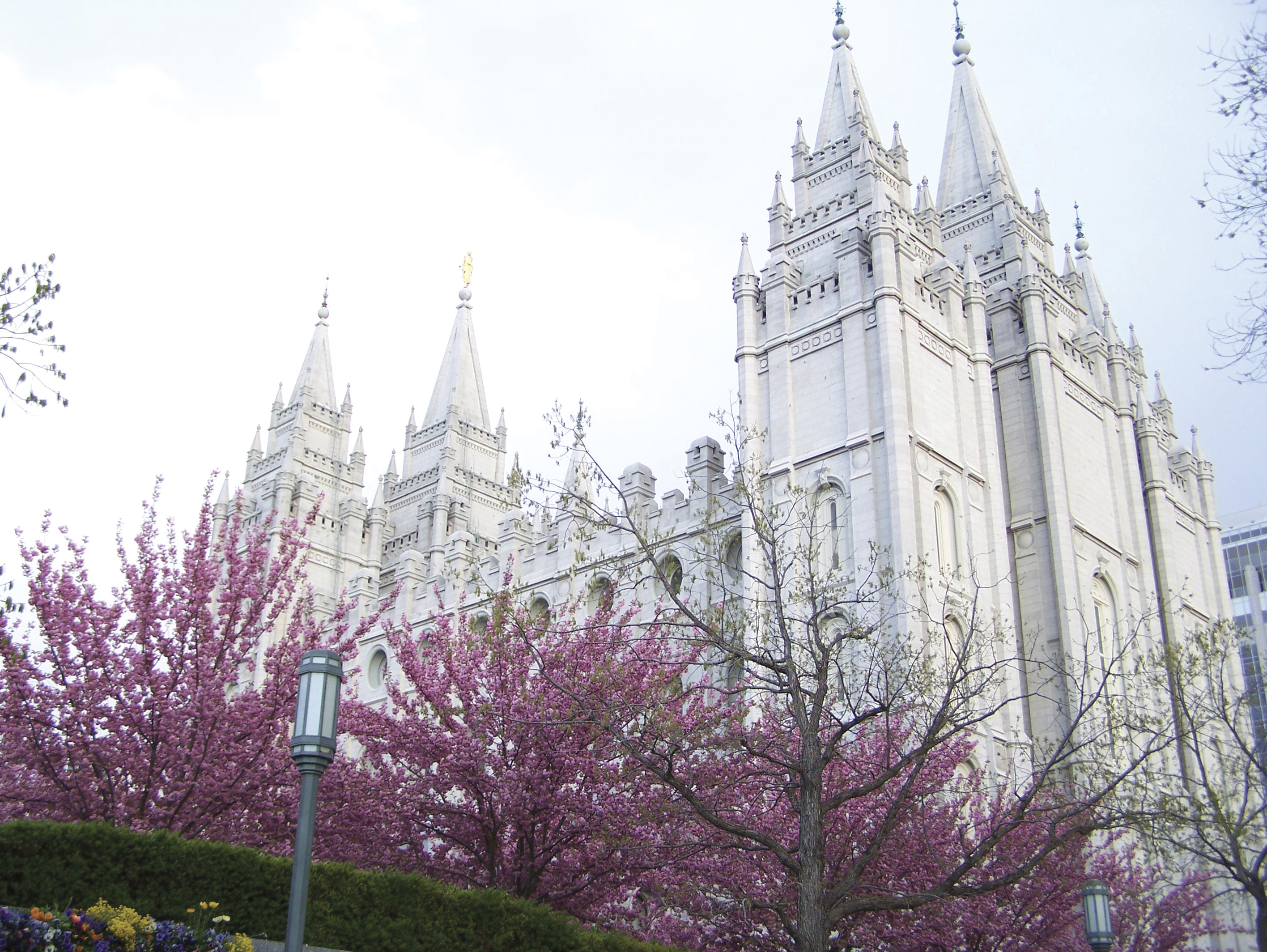The Salt Lake Temple north view, including scenery.