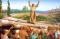 Noah's preaching scorned